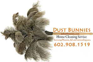 Arizona House Cleaning Service Dustbunnies