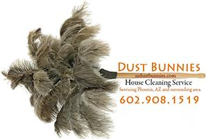 Arizona House Cleaning Service Dustbunnies